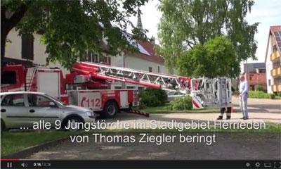 Video von der Beringung der Störche von Hans Christ